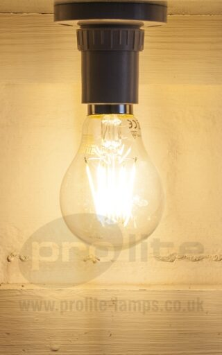 6W LED Filament GLS Lit